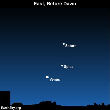 10dec03 430 EarthSky Tonight—December 3, Greatest illuminated extent for Venus December 4