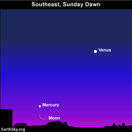 jan 01 Sky TonightJanuary 1, Moon and Mercury below Venus before dawn tomorrow