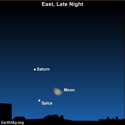 24jan2 Sky Tonight—January 24, Moon, Saturn, Spica from midnight until dawn