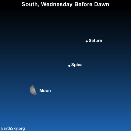 25jan Sky Tonight—January 25, Last quarter moon, Saturn, Spica before sunrise