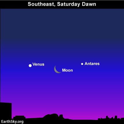 28jan Sky Tonight—January 28, Moon and Venus in dawn and predawn sky tomorrow