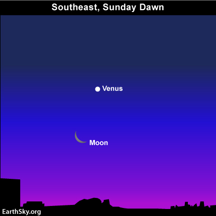 29jan Sky Tonight—January 29, Moon and Venus still close before sunrise