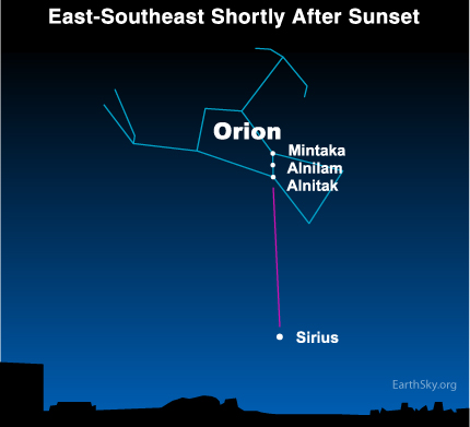 jan11  Sky Tonight—January 11,Two stars flag sun's path through Milky Way