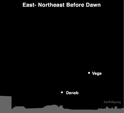 jan17 Sky TonightJanuary 17, Sun moves toward star Vega in journey around galaxy