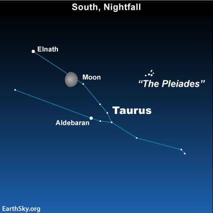 feb12 Sky TonightFebruary 12, Moon between stars Elnath and Aldebaran