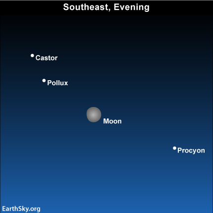feb15 Sky Tonight—February 15, Moon close to Castor and Pollux