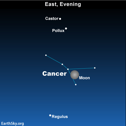 feb16 Sky Tonight—February 16, Bright moon puts Cancer in spotlight