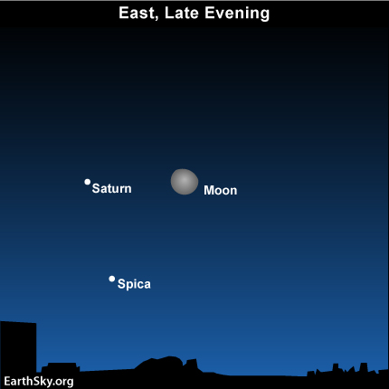 feb20 Sky Tonight—Feb 20, Moon, Saturn, Spica rise in late evening