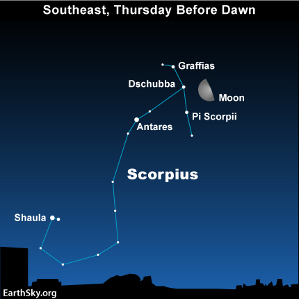 feb23 Sky Tonight—Feb 23, Moon by Scorpion's Crown before tomorrows dawn
