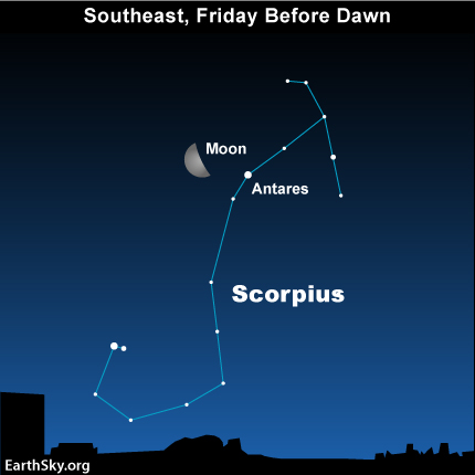 feb24 Sky Tonight—Feb 24, Moon by Scorpion's Heart before dawn