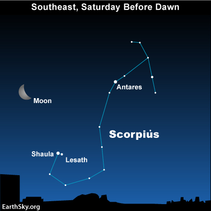 feb25 Sky TonightFeb 25, Scorpius the Scorpions stinger stars an early harbinger of spring