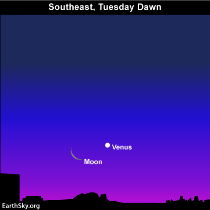 feb281 Sky Tonight—Feb 28, Moon and Venus closest together on morning of March 1