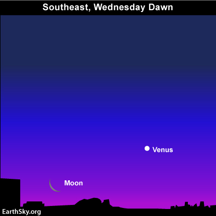 mar01 Sky Tonight—March 1, Moon still close to Venus before sunrise