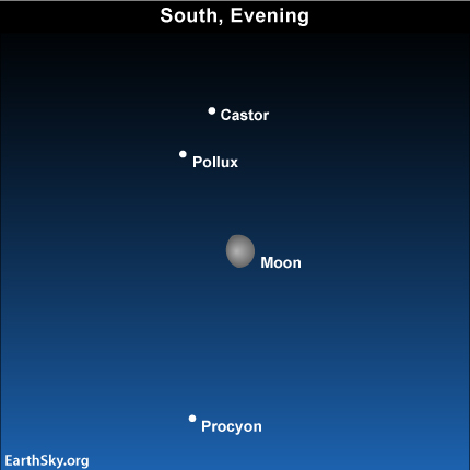 mar14 Sky TonightMarch 14, Moon and Gemini stars high in south