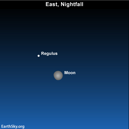 mar17 Sky Tonight—March 17, Moon swings close to Leo's bright star Regulus
