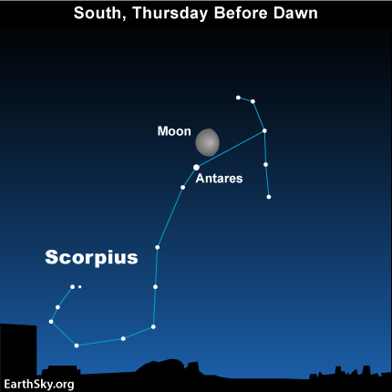 mar231 Sky Tonight—March 23, Moon near red star Antares before dawn