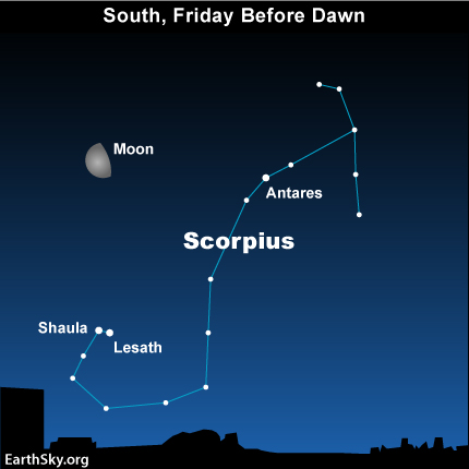 mar24 Sky Tonight—March 24, Predawn moon near the Scorpion's Stinger