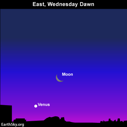 mar29 Sky Tonight—March 29, Moon and Venus low in east at dawn tomorrow