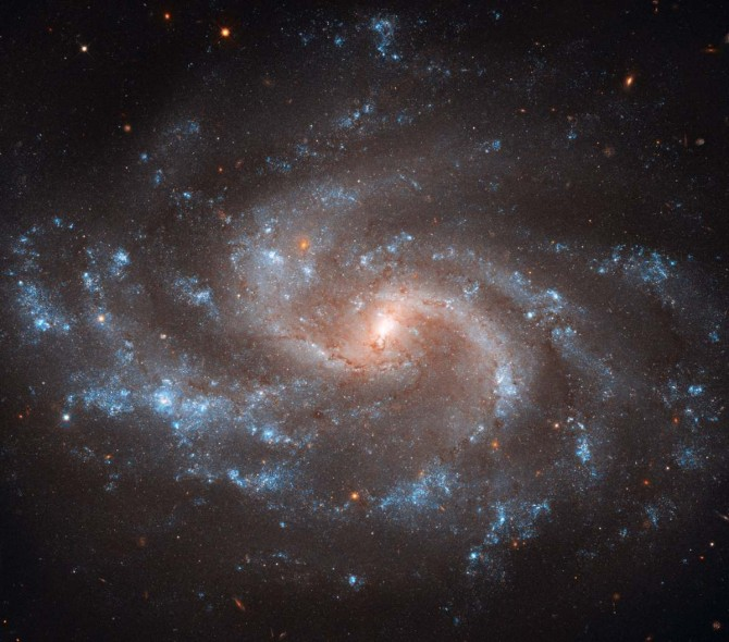 ngc5584 hstr1 670x590 Astronomy Picture of the Day