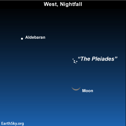 Apr061 Sky Tonight—April 6, Pleiades cluster above crescent moon