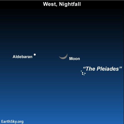 Apr07 Sky Tonight—April 7, Waxing crescent moon in front of Taurus