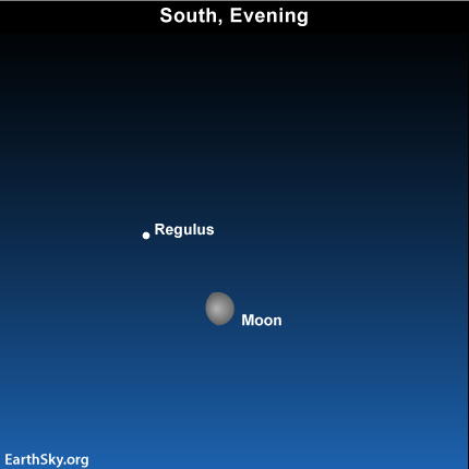 Apr13 Sky Tonight—April 13, Moon close to Regulus – a Royal Star