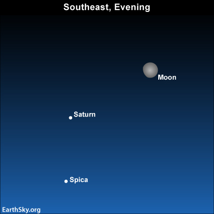 Apr15 Sky Tonight—April 15, Moon shines near Saturn