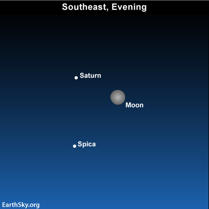 Apr16 Sky Tonight—April 16, Nearly full moon and Saturn
