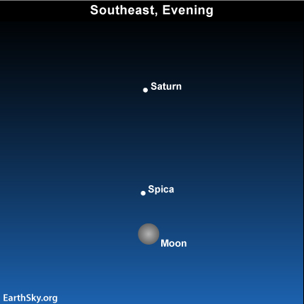 Apr17 Sky Tonight—April 17, April full moon near Spica and Saturn