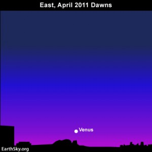 Apr21 3001 Sky Tonight—April 21, Lyrid meteors fly in moonlight, Venus shines
