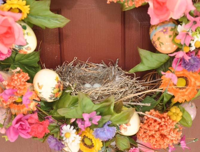 finch nest 2 Berthoud Swans
