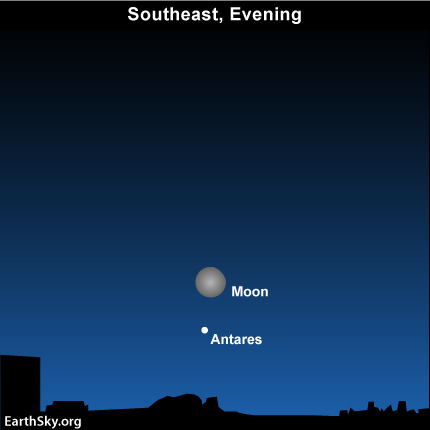 may17 Sky Tonight—May 17, Bright moon near the Scorpion's Heart
