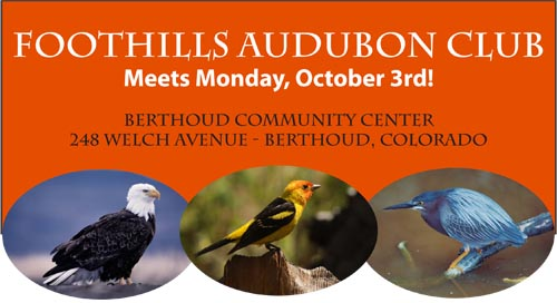 FAC.Oct 1 Audubon Club presents Wild Birding Colorado