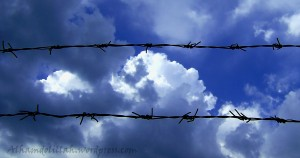 barbed wire clouds 300x158 On This Day, October 27, 1873