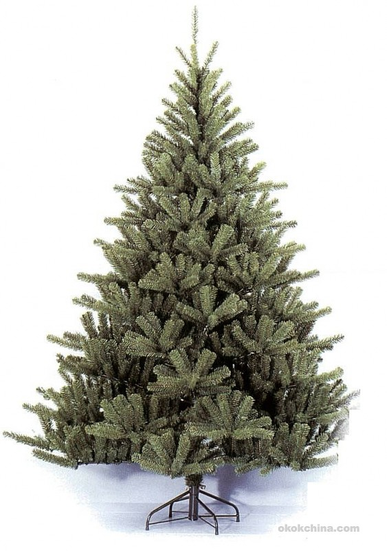 Christmas Tree natural965 563x800 Christmas tree, buy or cut