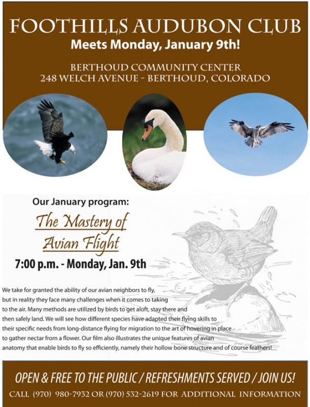 FAC.January20121340670 609x800 Foothills Audubon January program