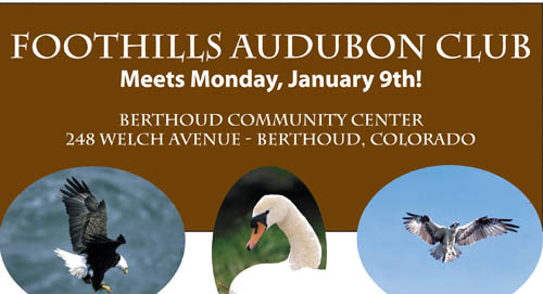 FoothillsAudubon features.January2012 Foothills Audubon January program