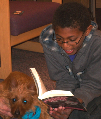 Untitled Paws to Read at Berthoud Library