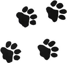 pawprints Paws to Read at Berthoud Library