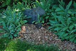 Leaf Mulch2 Easy Steps to a Low Maintenance Eco friendly Landscape