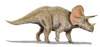 Visit Colorado Dinosaurs