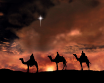 camels December Star Night at the LTO