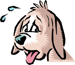 panting-dog