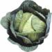 Crisp Colorado cabbage adds crunch